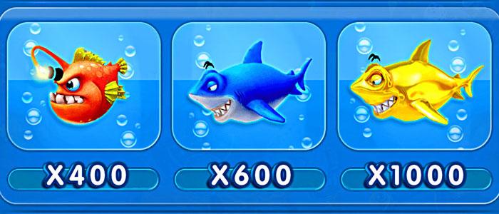 Fishing Playtable 5